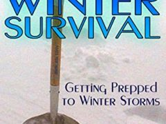 Winter Survival: Getting Prepped to Winter Storms : (How to Survive, Survival Book)